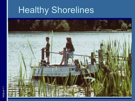 Healthy Shorelines Module 1:1. The Shoreline Area Littoral Riparian Upland Module 1:2.