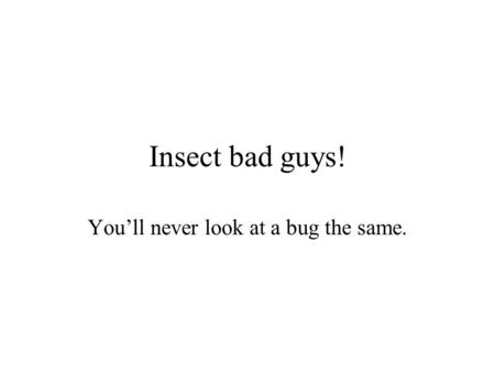 Insect bad guys! You'll never look at a bug the same.