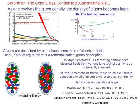 As one evolves the gluon density, the density of gluons becomes large: Gluons are described by a stochastic ensemble of classical fields, and JKMMW argue.