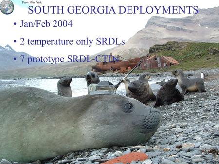 Photo: Mike Fedak Jan/Feb 2004 2 temperature only SRDLs 7 prototype SRDL-CTDs SOUTH GEORGIA DEPLOYMENTS.