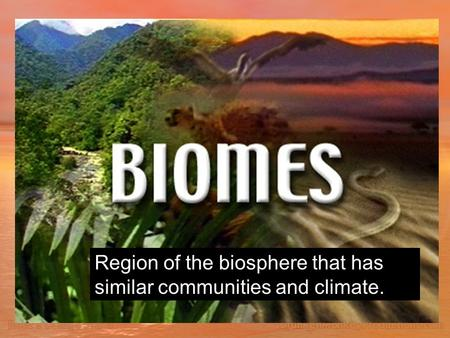 Region of the biosphere that has similar communities and climate.