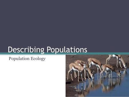 Describing Populations Population Ecology. POPULATION Individuals of the same species living in a particular area Population size, density, distribution.
