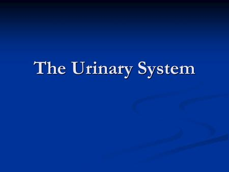 The Urinary System. As your body performs the chemical activities that keeps you alive, wastes material such as carbon dioxide and nitrogen are produced.