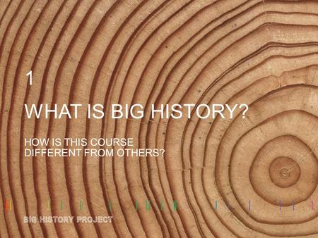 WHAT IS BIG HISTORY? HOW IS THIS COURSE DIFFERENT FROM OTHERS? 1.