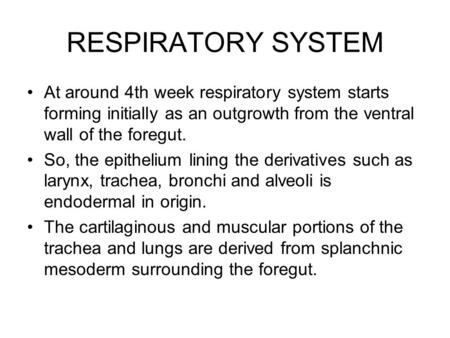 RESPIRATORY SYSTEM At around 4th week respiratory system starts forming initially as an outgrowth from the ventral wall of the foregut. So, the epithelium.