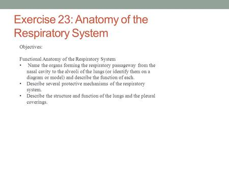 Exercise 23: Anatomy of the Respiratory System Objectives: Functional Anatomy of the Respiratory System Name the organs forming the respiratory passageway.