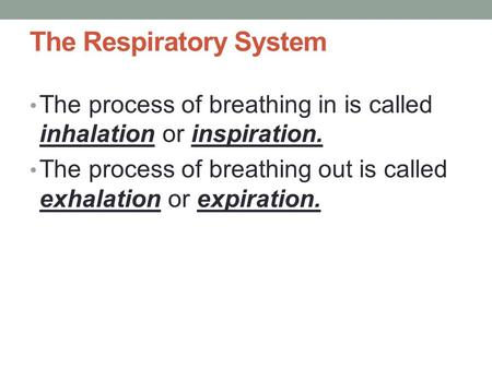 The Respiratory System The process of breathing in is called inhalation or inspiration. The process of breathing out is called exhalation or expiration.