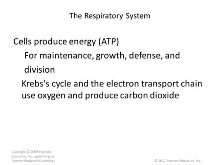 The Respiratory System Cells produce energy (ATP) For maintenance, growth, defense, and division Krebs's cycle and the electron transport chain use oxygen.