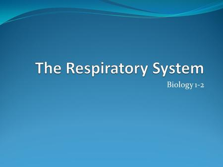 Biology 1-2. Respiration The respiratory system handles gas exchange between the body and the environment. Brings in oxygen and removes carbon dioxide.