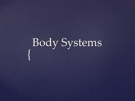 { Body Systems. The Body systems: 1.Skeletal 2.Circulatory 3.Digestive 4.Excretory 5.Muscular 6.Nervous 7.Respiratory.