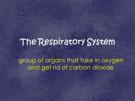 The Respiratory System group of organs that take in oxygen and get rid of carbon dioxide.