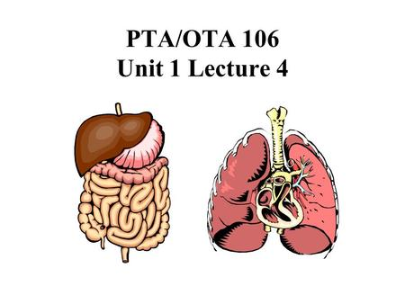PTA/OTA 106 Unit 1 Lecture 4. Overview of the Digestive System.