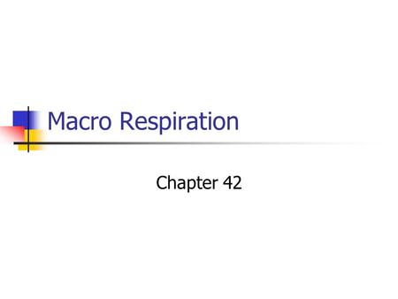 Macro Respiration Chapter 42. What you need to know The general characteristics of a respiratory surface. The pathway a molecule of oxygen takes from.