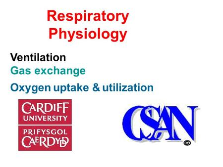 Respiratory Physiology Ventilation Gas exchange Oxygen uptake & utilization.