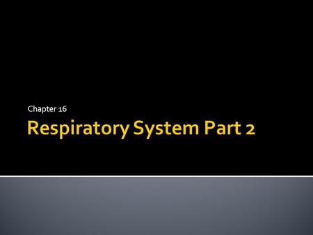 Chapter 16.  Ventilation includes:  Inspiration (inhalation)  Expiration (exhalation)