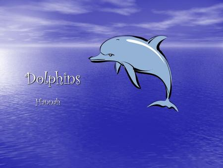 Dolphins Hannah. Facts about Dolphins There are 40 different species of dolphins. 6 of those species are called whales but are really dolphins. They are.