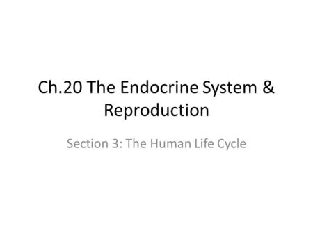 Ch.20 The Endocrine System & Reproduction Section 3: The Human Life Cycle.