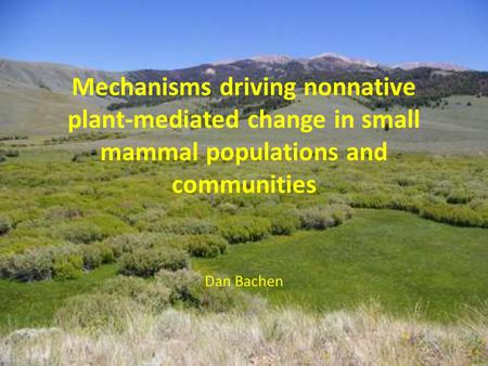 Mechanisms driving nonnative plant-mediated change in small mammal populations and communities Dan Bachen.