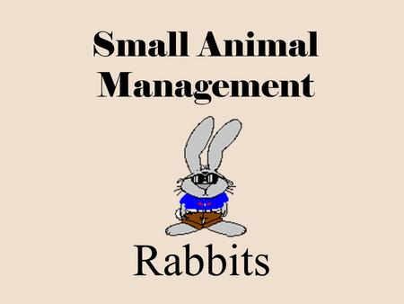 Small Animal Management Rabbits I. Parts Ear Cheek Belly Hock Tail Neck Shoulder Dewlap Rump Flank.