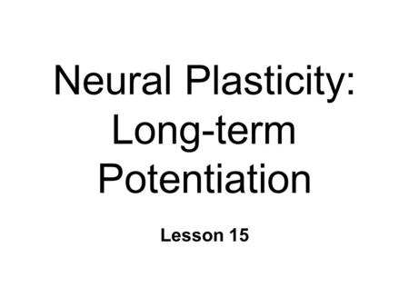 Neural Plasticity: Long-term Potentiation Lesson 15.