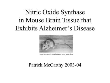 Nitric Oxide Synthase in Mouse Brain Tissue that Exhibits Alzheimer's Disease Patrick McCarthy 2003-04