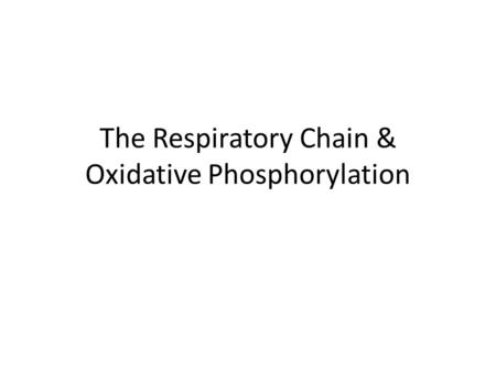 The Respiratory Chain & Oxidative Phosphorylation.