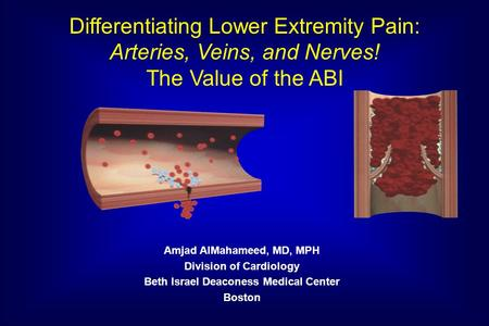 Amjad AlMahameed, MD, MPH Division of Cardiology Beth Israel Deaconess Medical Center Boston Differentiating Lower Extremity Pain: Arteries, Veins, and.