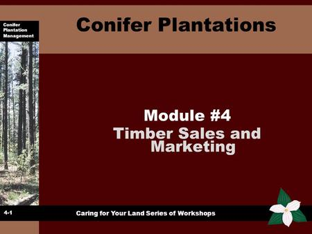 Conifer Plantation Management Caring for Your Land Series of Workshops Conifer Plantations Module #4 Timber Sales and Marketing 4-1.