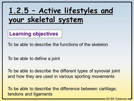 1.2.5 – Active lifestyles and your skeletal system Learning objectives To be able to describe the functions of the skeleton To be able to define a joint.