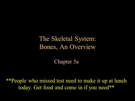 The Skeletal System: Bones, An Overview