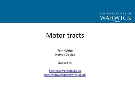 Motor tracts Fern White Harvey Davies Questions: