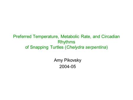 Preferred Temperature, Metabolic Rate, and Circadian Rhythms of Snapping Turtles (Chelydra serpentina) Amy Pikovsky 2004-05.