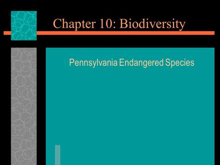 Chapter 10: Biodiversity Pennsylvania Endangered Species.