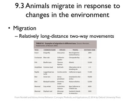9.3 Animals migrate in response to changes in the environment Migration – Relatively long-distance two-way movements From Nordell and Valone, Animal Behavior: