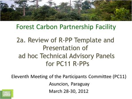 Forest Carbon Partnership Facility 2a. Review of R-PP Template and Presentation of ad hoc Technical Advisory Panels for PC11 R-PPs Eleventh Meeting of.