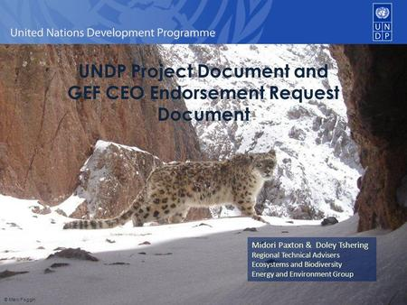 UNDP Project Document and GEF CEO Endorsement Request Document Midori Paxton & Doley Tshering Regional Technical Advisers Ecosystems and Biodiversity Energy.