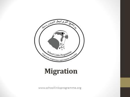 Migration www.schoollinksprogramme.org. What is migration? Migration - the regular movement of birds and other creatures from one part of the world to.