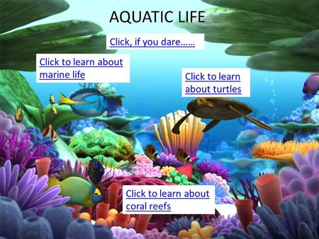 Hrthtrt AQUATIC LIFE Click to learn about turtles Click to learn about marine life Click to learn about coral reefs Click, if you dare……