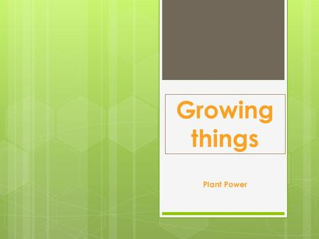 Growing things Plant Power. WALT: Getting started: 1/3  In your topic study book  Date What do I know about plants/flower.