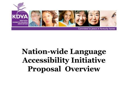 Nation-wide Language Accessibility Initiative Proposal Overview.