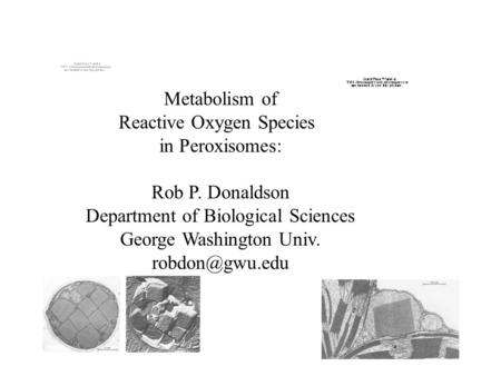 Metabolism of Reactive Oxygen Species in Peroxisomes: Rob P. Donaldson Department of Biological Sciences George Washington Univ.