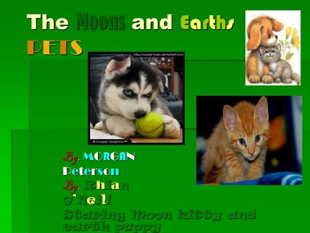 The Moons and Earths PETS By. MO R G A N PetersonPetersonPetersonPeterson By. R h i a n O'NeillO'NeillO'NeillO'Neill Staring Moon kitty and earth puppy.