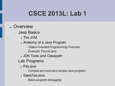 CSCE 2013L: Lab 1 Overview  Java Basics The JVM Anatomy of a Java Program  Object-Oriented Programming Overview  Example: Payroll.java JDK Tools and.