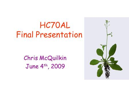 HC70AL Final Presentation Chris McQuilkin June 4 th, 2009.
