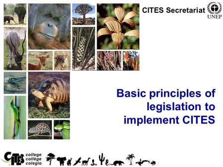 1 Basic principles of legislation to implement CITES CITES Secretariat.