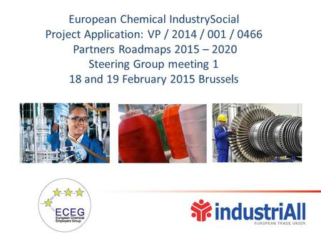 European Chemical IndustrySocial Project Application: VP / 2014 / 001 / 0466 Partners Roadmaps 2015 – 2020 Steering Group meeting 1 18 and 19 February.