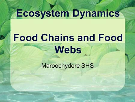 Ecosystem Dynamics Food Chains and Food Webs Maroochydore SHS.