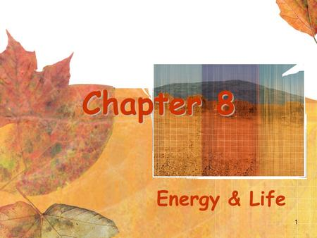 1 Chapter 8 Energy & Life. Cell Energy Energy is essential to life. All living organisms must: be able to produce energy store energy for future use,