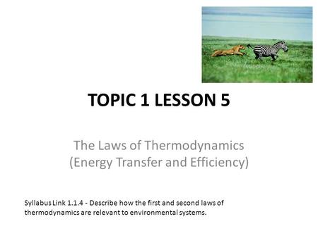 TOPIC 1 LESSON 5 The Laws of Thermodynamics (Energy Transfer and Efficiency) Syllabus Link 1.1.4 - Describe how the first and second laws of thermodynamics.