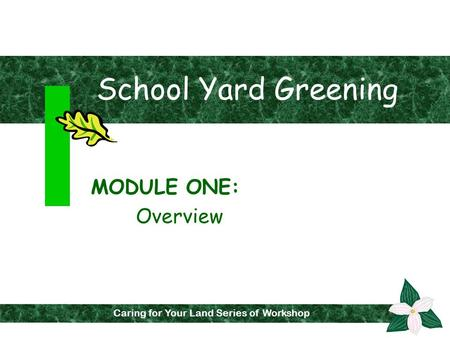 School Yard Greening MODULE ONE: Overview Caring for Your Land Series of Workshops Caring for Your Land Series of Workshop.